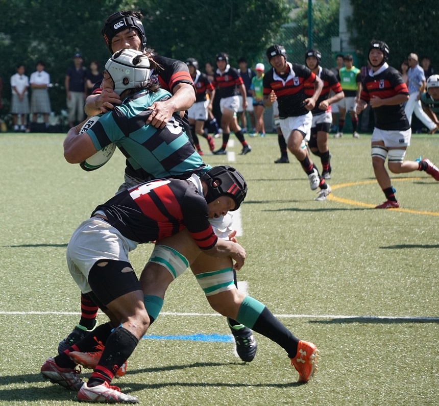 rugby_top