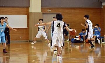 shs_basket_H291105_1