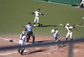 baseball_20201117_thumb